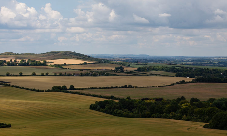 View over the Chiltern Hills